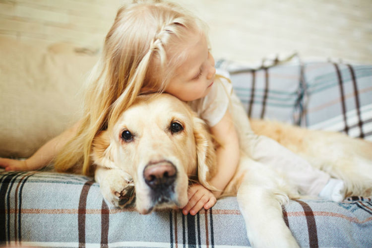 Sicherheit für Kinder mit Hunden